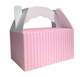40% OFF -  Snack Box - Pink stripe