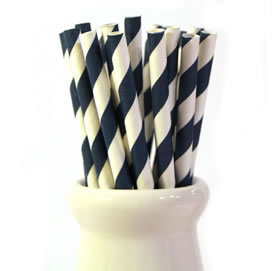 Paper Straws - Navy blue stripe