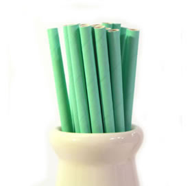 Paper Straws - Solid spearmint